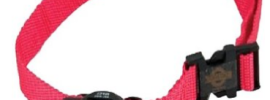 PetSafe Basic Bark Collar, PBC-102 Review