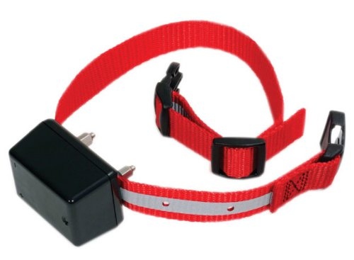 Innotek Basic Remote Trainer Collar FS-15 Review