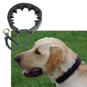 Starmark Training Collar