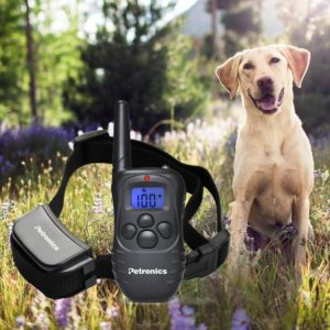 Petronics 330 Yards Rechargeable Shock Training Collar with Remote Review